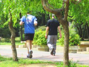 サルコペニア肥満基準